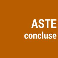 Aste Concluse