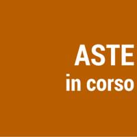 Aste In Corso