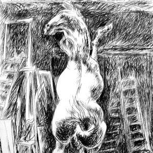 Pericle Fazzini, Cavallo